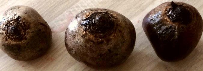 Matjes Tatar und Petersilienkartoffeln (5)