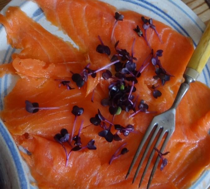 Kartoffelpuffer,Lachsforelle,Rote Beete Salat (13)