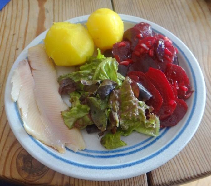 Rote Bete Salat,Kartoffel,Bunter Salat,Forelle (1)