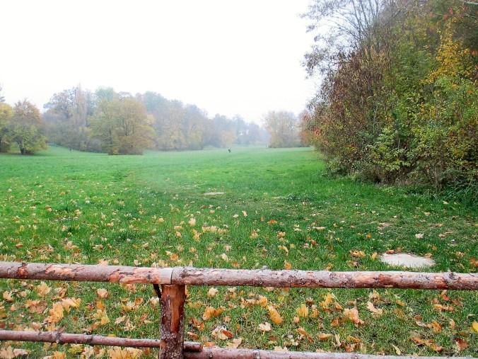 Sonntag Morgen im Park (7)