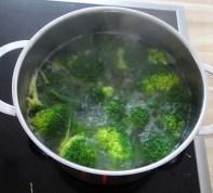 Limetten Spaghetti mit Garnelen und Brokkoli,bunter Salat (12)