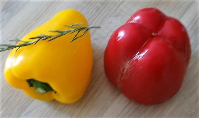 Muscheln in Tomatensauce und Paprikabrot (7)