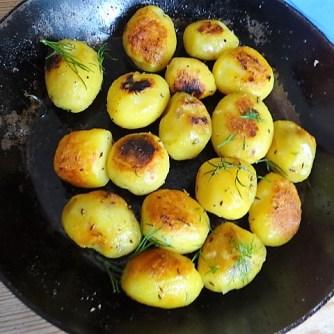 1Marinierter Hering,Rote Bete Salat, Bratkartoffeln (23)