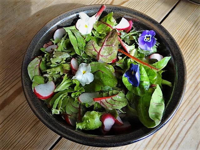 Rotbarsch,Couscous,Bunter Salat (10)