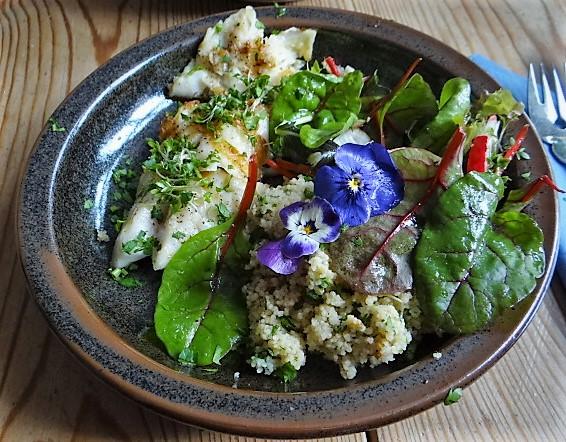 Rotbarsch,Couscous,Bunter Salat (14)