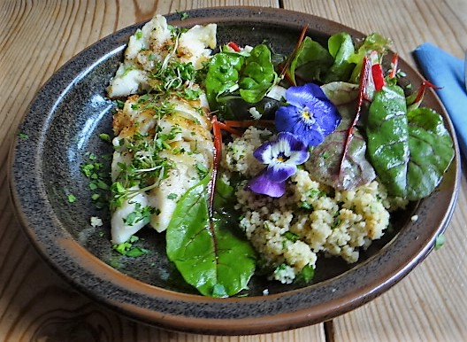 Rotbarsch,Couscous,Bunter Salat (15)