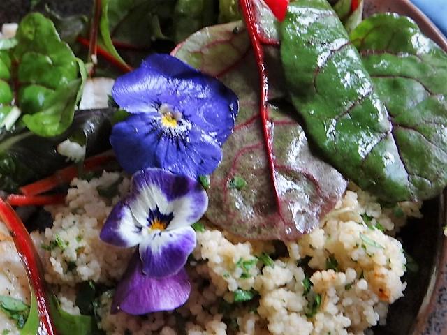 Rotbarsch,Couscous,Bunter Salat (16)