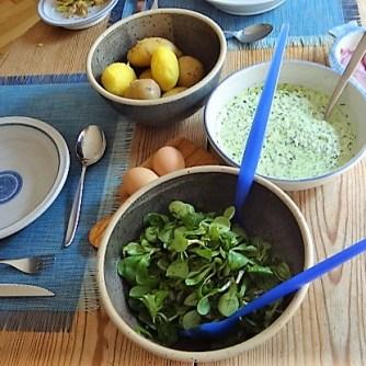 Kartoffel,Fisch,Dip (10)