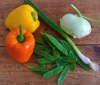 Medaillons,Kartoffelstampf,Paprika (17)