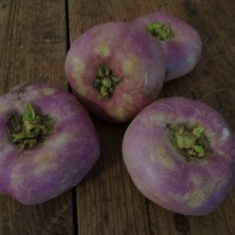 Navets,Kartoffelgratin,Salat (7)