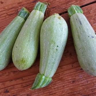 Gebratenes Gemüse mit gebackenem Feta und Kartoffeltaler (12)