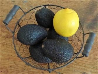 Kartoffeltaler mit Guacamole und Wildkräutersalat (8)