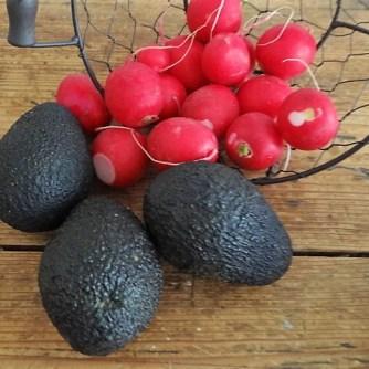 Kartoffeltaler mit Guacamole und Wildkräutersalat (9)