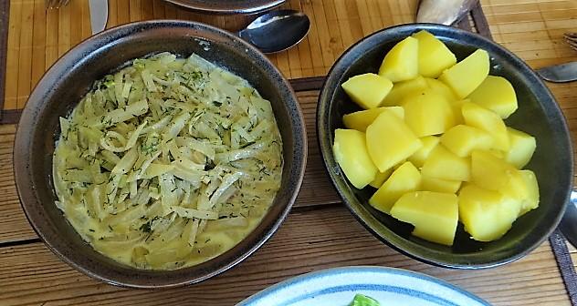 Kohlrabi Gemüse,Kartoffeln,Salat (1c)