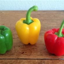 Paprika in Kokosmilch und Gewürzreis (8)