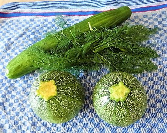 Gefüllte Zucchini mit Kartoffelauflauf (6).JPG