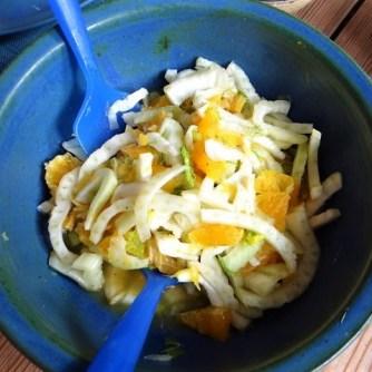Kartoffel-Möhren Pupper mit Quark Dip und Fenchelsalat (14)