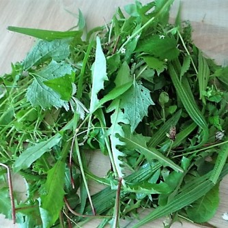 Wildkräutersauce ,Kartoffelstampf,Brokkoli (6)