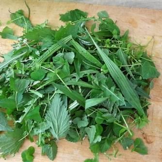 Wildkräutersauce ,Kartoffelstampf,Brokkoli (7)