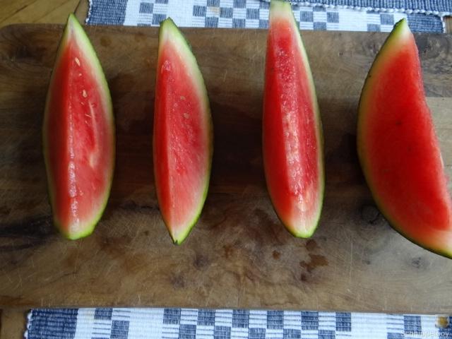 Gemüse Quiche (29)
