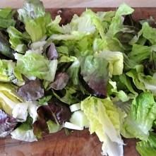 Gemüse,Salat und Ei (10)