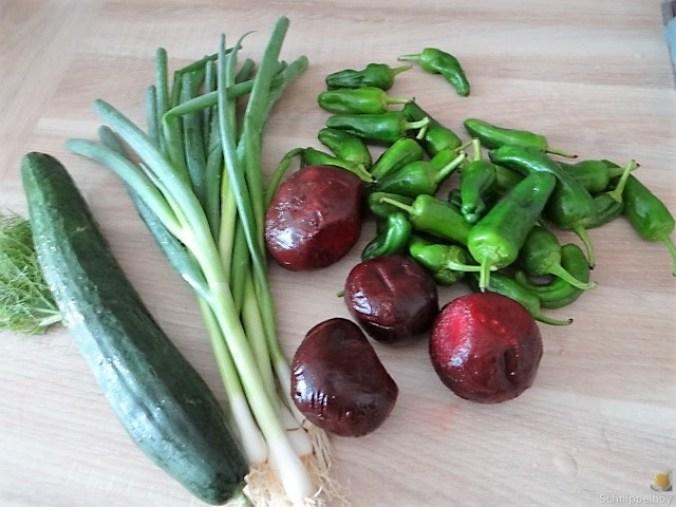 Kleine Kartoffelaufläufe,Rote Beete,Gurke,Pimientos,Feta (7)