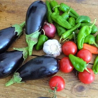 Auberginen,Tomate,Feta,Pimientos,Reis (9)