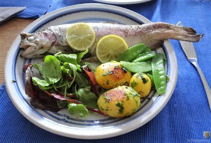 Forelle mit Petersilienkartoffel, Meerrettichdip und Salat (1)