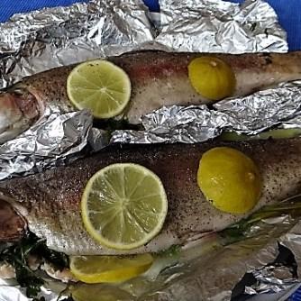 Forelle mit Petersilienkartoffel, Meerrettichdip und Salat (12)