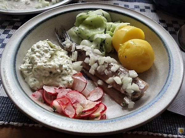 Matjes,Gurkensalat,Tzatziki,Radieschen,Pellkartoffeln (15)