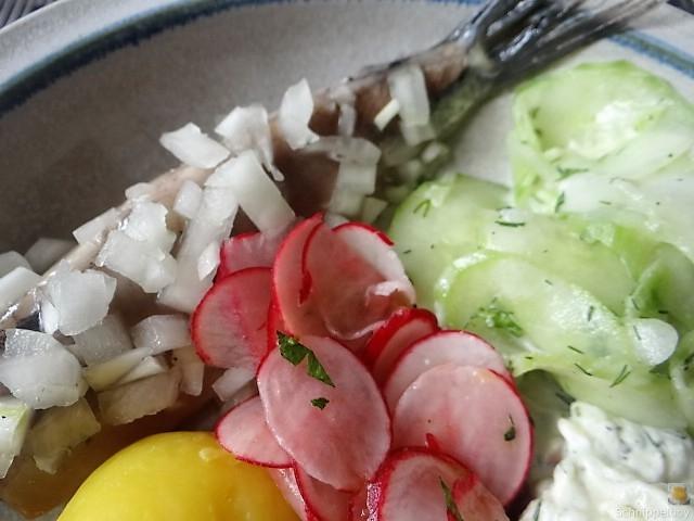 Matjes,Gurkensalat,Tzatziki,Radieschen,Pellkartoffeln (3)