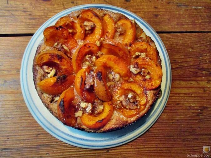 aprikosenkuchen-21-6-15-5