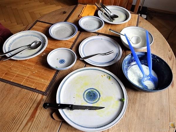 Kürbisrösti,Lachs,Salat,Rhabarberkompott (24)
