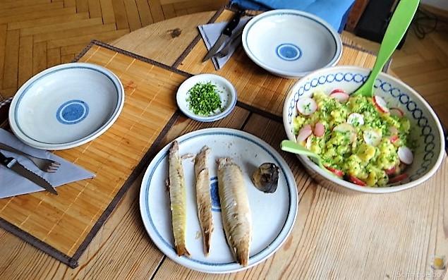 Kartoffelsalat und Makrele (16)