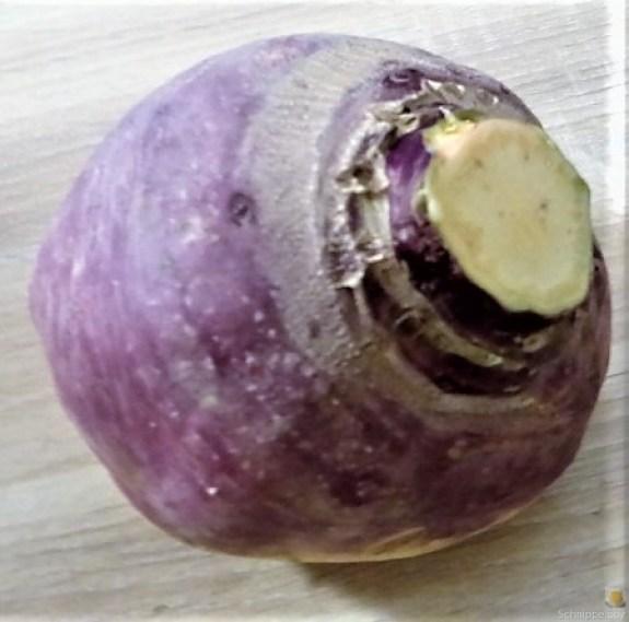 Steckrübeneintopf (7).JPG