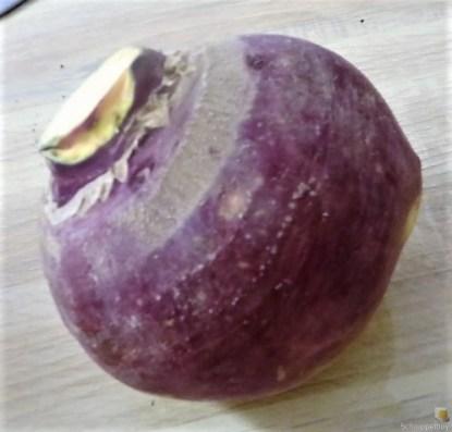 Steckrübeneintopf (8)