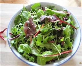 Tomatensalsa,Guacamole,Salat und Ei (12)