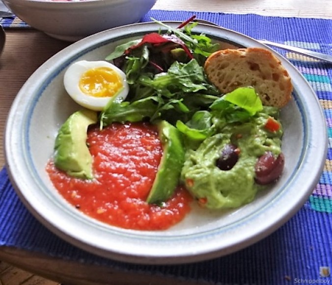Tomatensalsa,Guacamole,Salat und Ei (18)