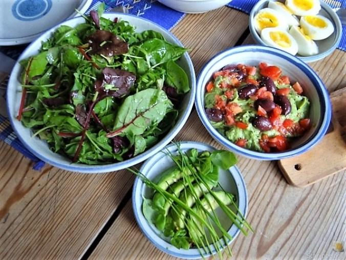 Tomatensalsa,Guacamole,Salat und Ei (4)
