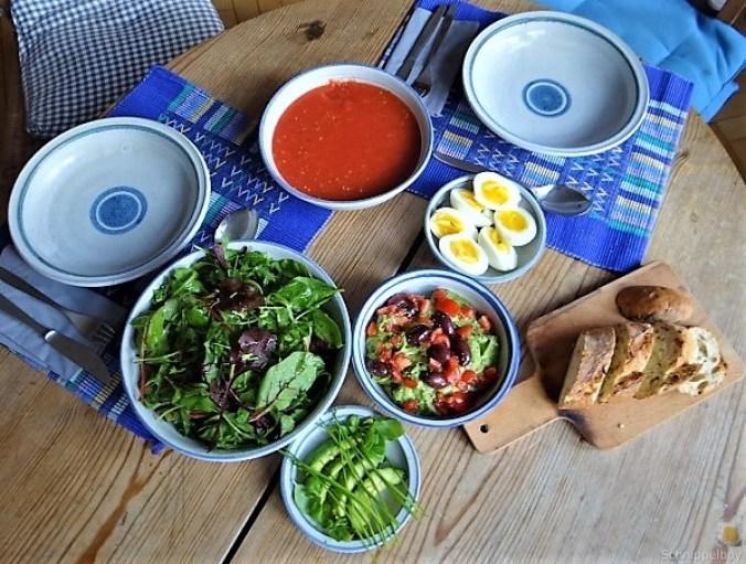 Tomatensalsa,Guacamole,Salat und Ei (6)
