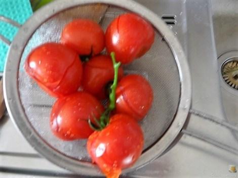 Tomatensalsa,Guacamole,Salat und Ei (8)