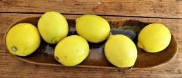 Zitronenhähnchen,Tzatziki (11)
