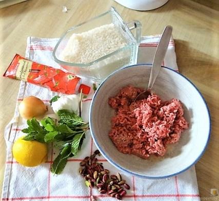Gefüllte Weinblätter, Bohnensalat, Humus,. (16)