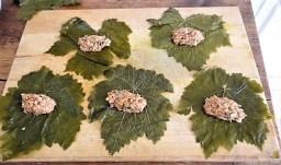 Gefüllte Weinblätter, Bohnensalat, Humus,. (20)