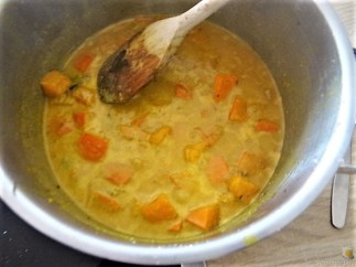 Kürbiscurry,Couscous, Guacamole,Salat (17)