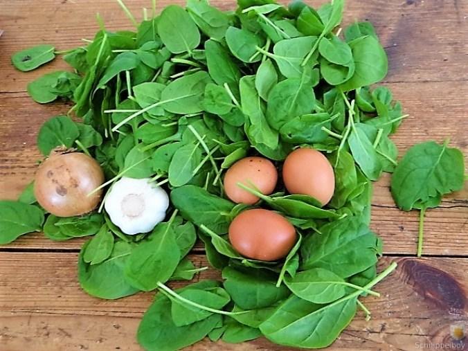 Spinatsuppe mit pochierten Eiern (7)