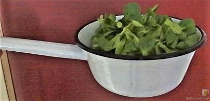 Kartoffel-Rote Bete Brei,Forelle,Makrele,Meerrettich Dip, Salate (13)