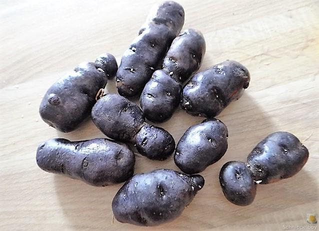 Spitzpaprtka in Wein, blaue Kartoffel (9)