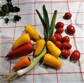 Falafel, Hummus, Gemüse, (11)