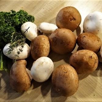 Klöße mit Pilzsauce,Obstsalat (10)